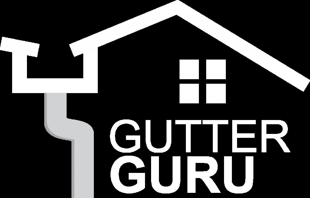 Gutter Guru 2 Transparent
